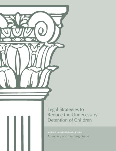 Legal-Strategise-to-Reduce-the-Unnecessary-Detention-of-Children Cover