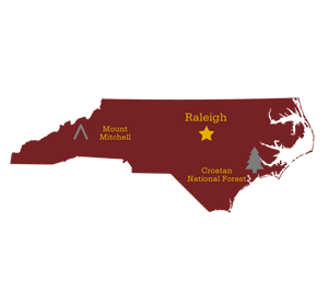 nc state laws for minors